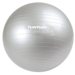 Physio Ball with Pump